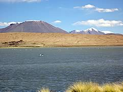 Cañapa Lagoon