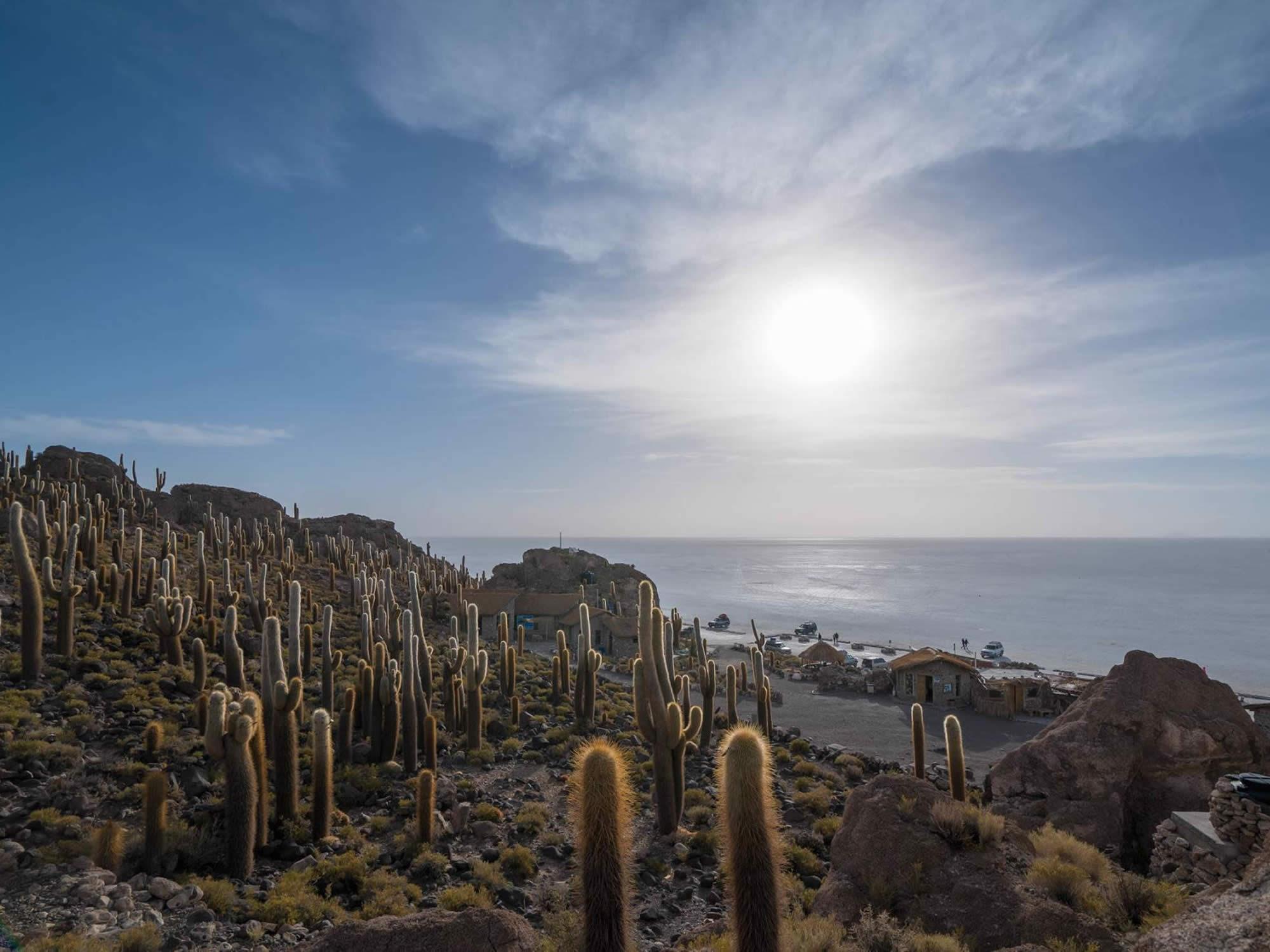 Incahuasi Island, Uyuni