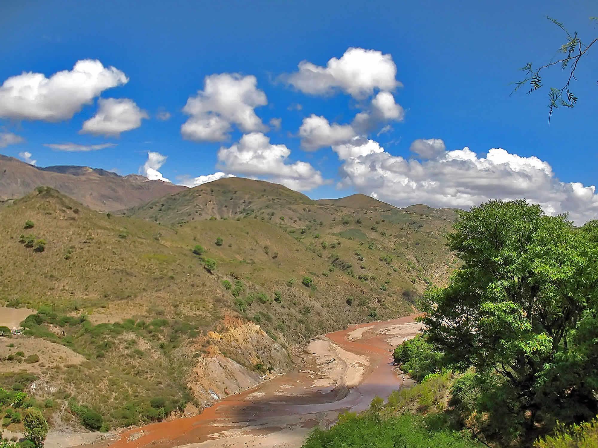 Cachimayu