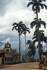 Town center of Cobija