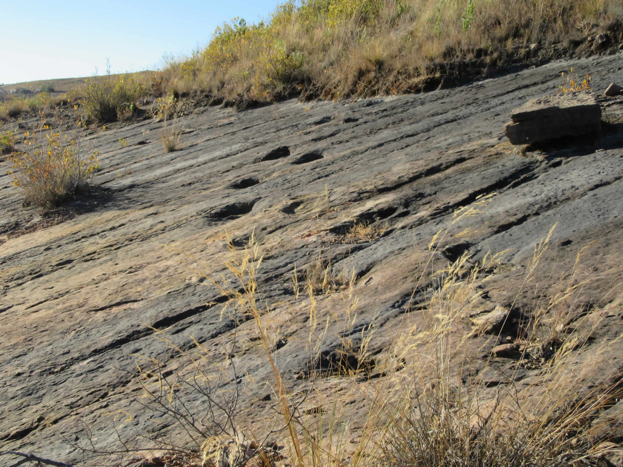 Huayllas Mountain and the Dinosaur footprints