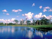 National Park Noel Kempf Mercado
