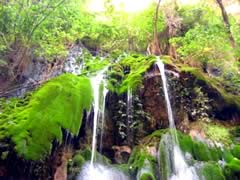 Vergel Waterfall