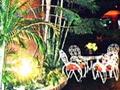 Hotel Jacaranda, Trinidad