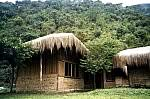Urpuma Eco Lodge, a 0 star Eco Hostel in Coroico