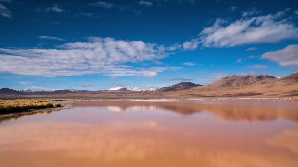 Private Tour Uyuni Salt Flat and Lagoons - Potosi or Sucre, Uyuni