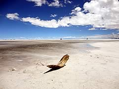 Private Tour La Paz - Uyuni - La Paz