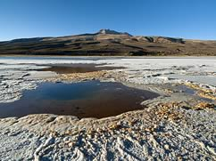 Private Tour Uyuni Salt Flat and Lagoons