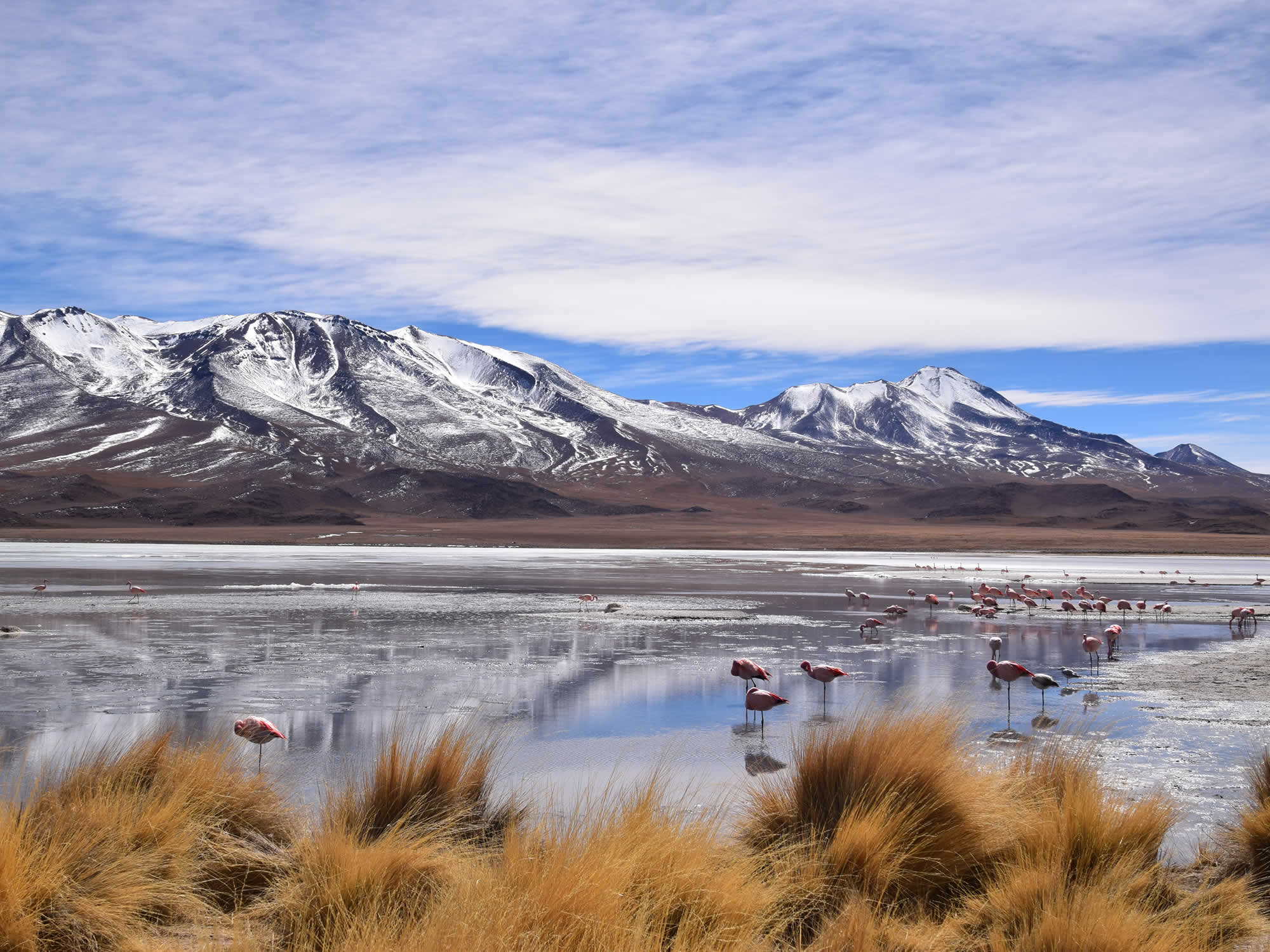 Private tour San Pedro de Atacama  -  Eduardo Avaroa National Park - Uyuni Salt Flat, 2 Days, 1 Night