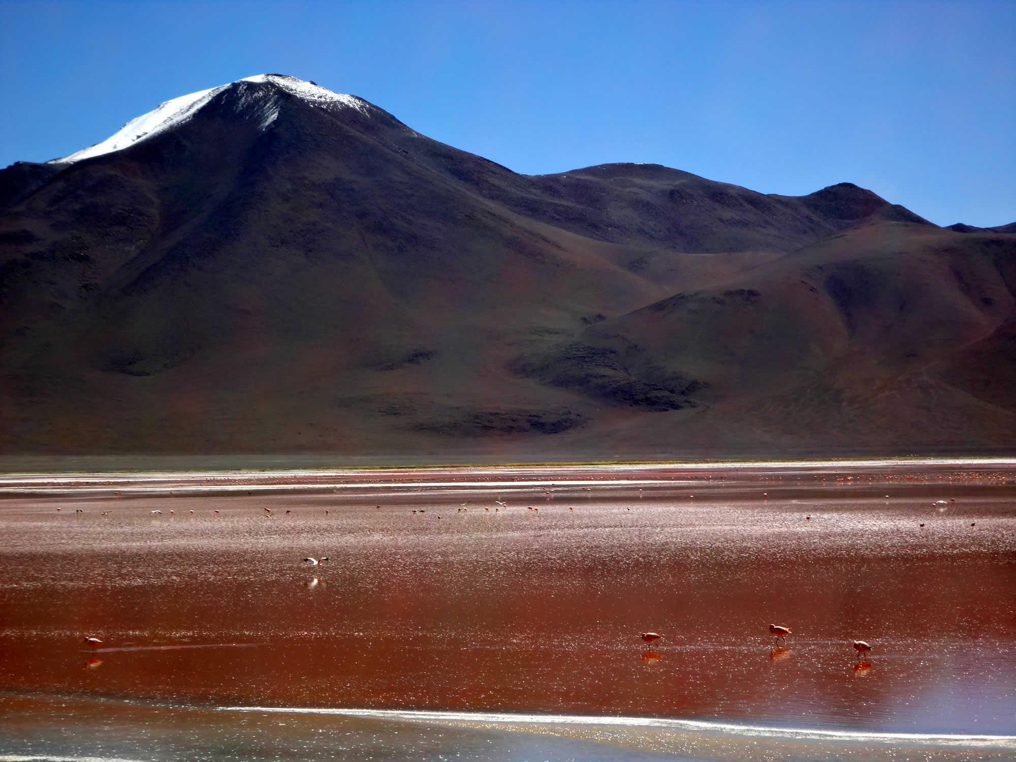 La Paz - Uyuni Salt Flat - La Paz Shared Tour by Train, Uyuni