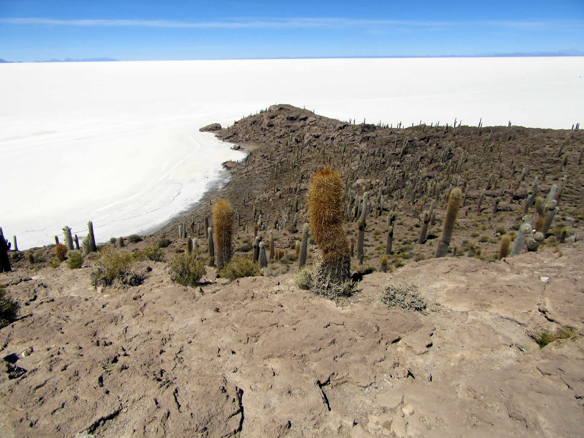 Majestic Uyuni Salt Flat Shared Tour, 1 Full Day