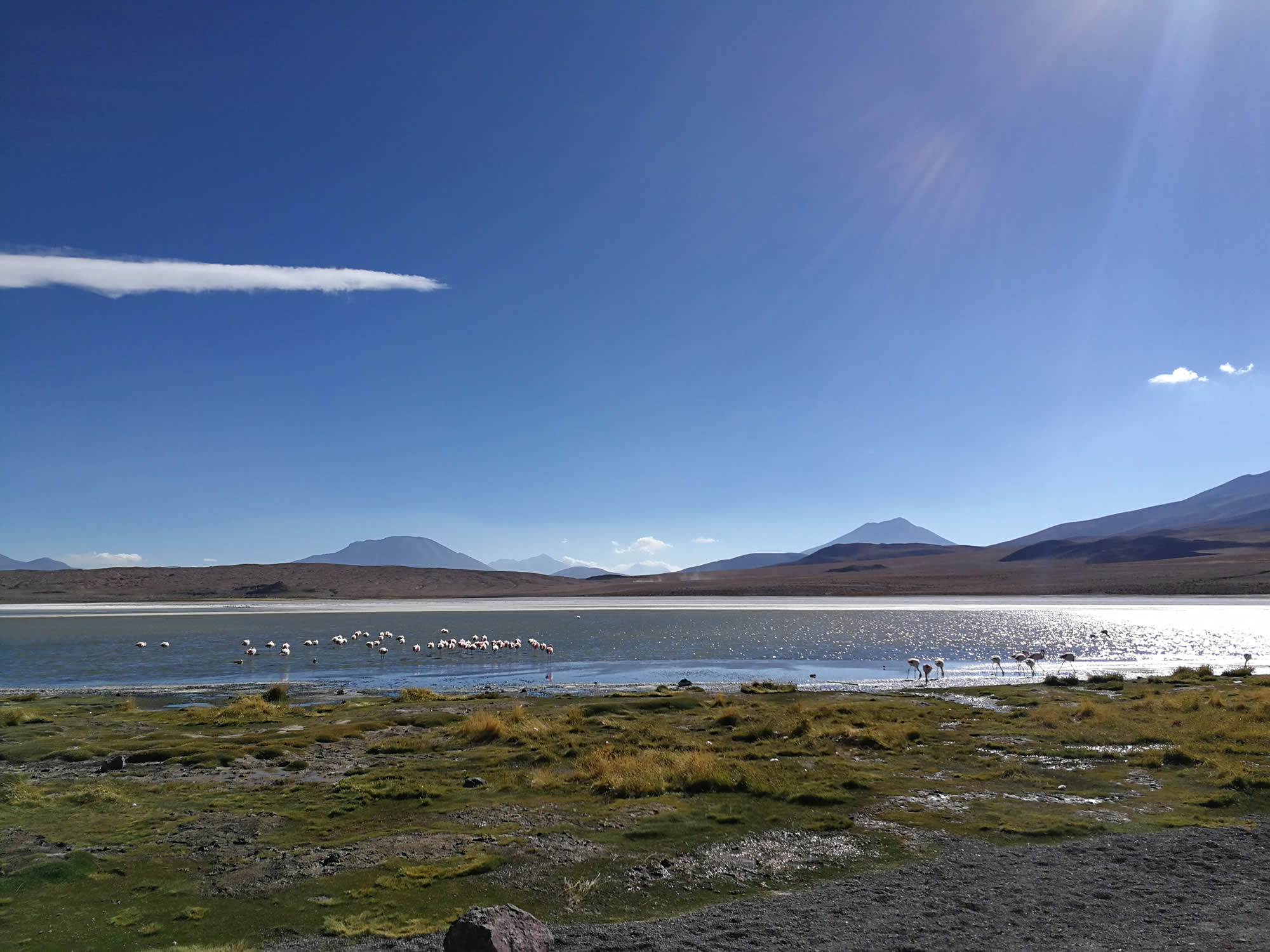 Private Tour Uyuni Salt Flat and Minor Lagoons, 2 Days, 1 Night